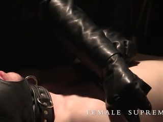 Baroness Essex Dominatrix in Agent in Place